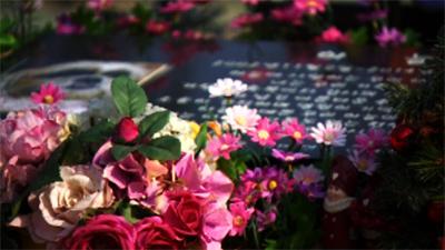 [CSI] '13년 반려견 유골함 없어져'…반려견 장례업체 피해 속출
