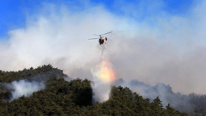 양양산불 강풍 타고 이틀째 활활…주민 300여명 긴급 대피
