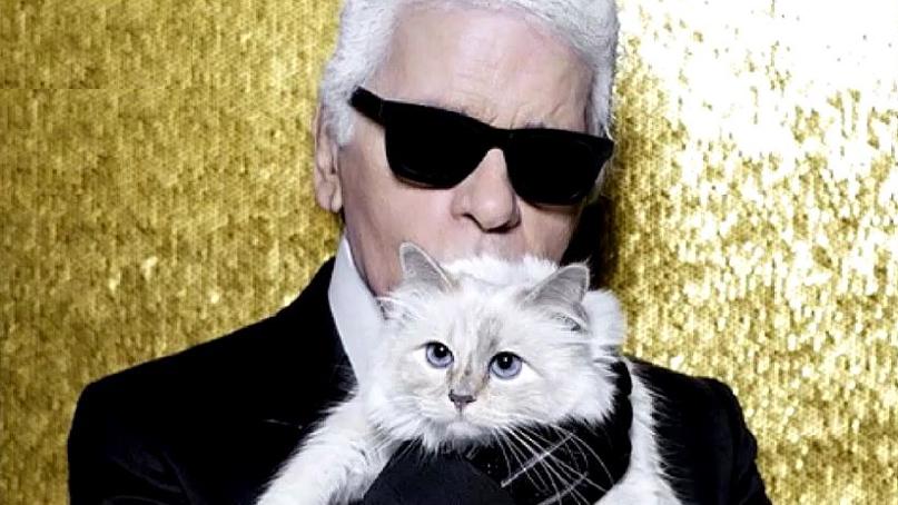 라거펠트 2000억대 재산 상속자는 고양이?