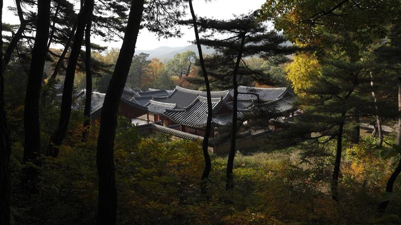 한국의 서원 9곳, 유네스코 세계유산 등재 확실시