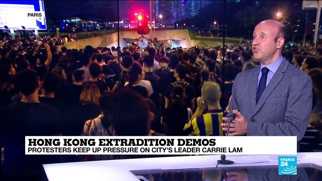 [France 24] Young people play crucial role in Hong Kong mass protests