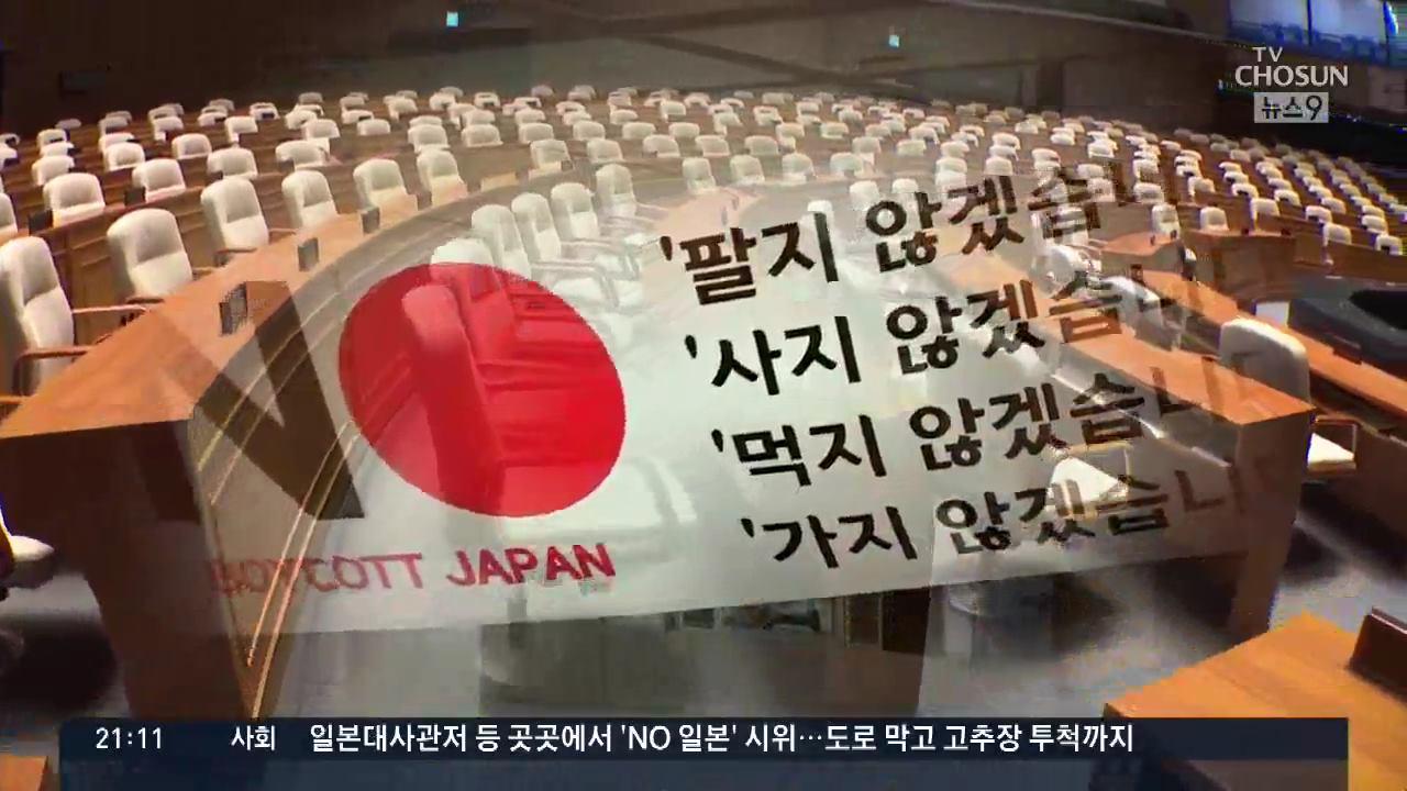 [포커스] '일본 패망론'까지…도 넘은 정치권 '反日'