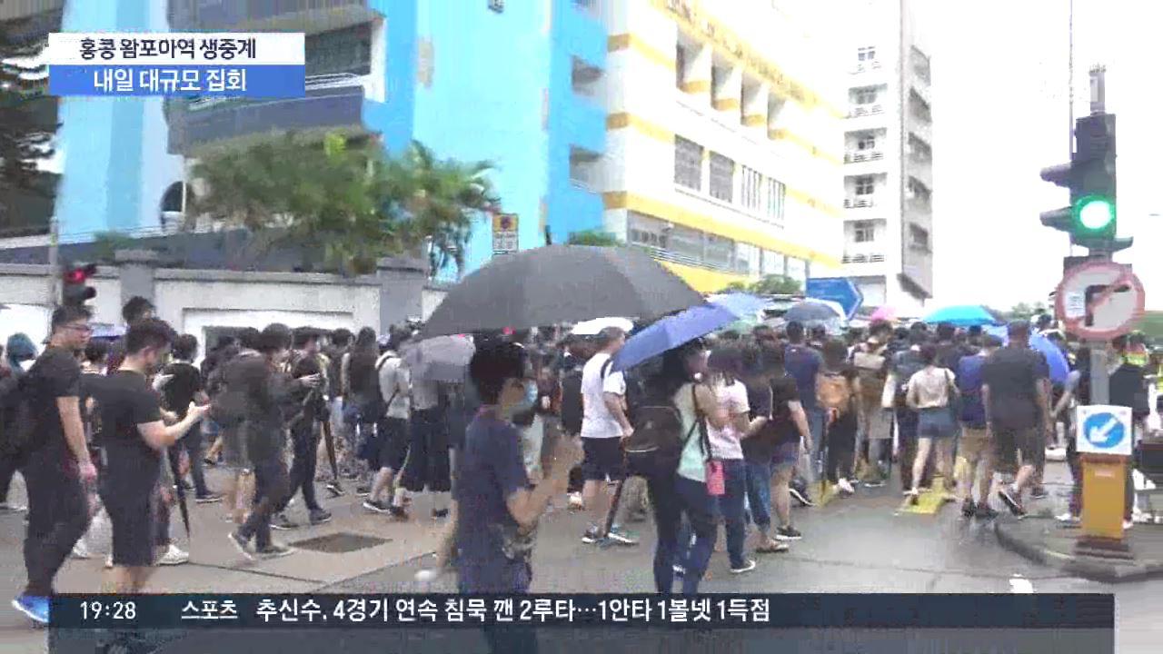 홍콩 시위대 '中 고립 전략' 맞서 '국제 여론전'