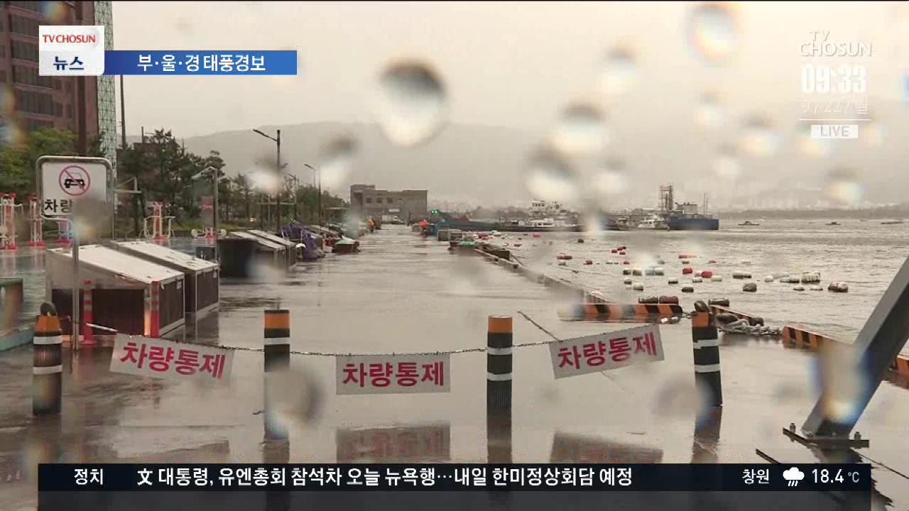 부울경 전 지역에 태풍 경보…비바람 점점 심해져