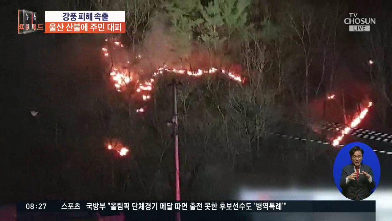 '울산 산불' 주민 4000명 대피…강풍 피해 잇따라