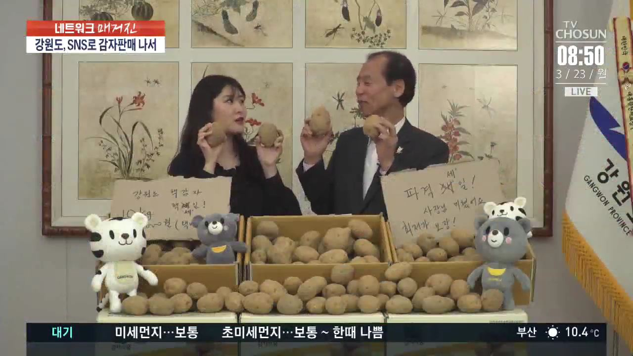 '10㎏ 5천원'…강원감자 팔아주기 운동에 연일 매진 행렬