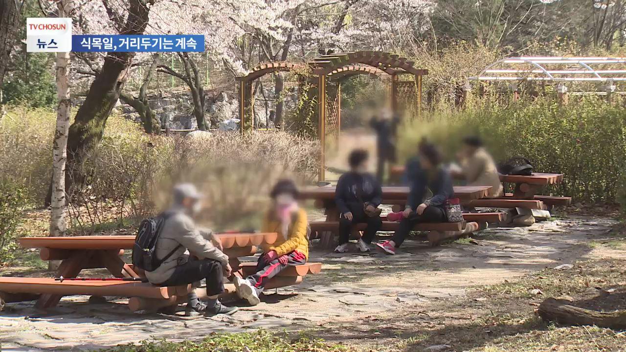 식목일 '꽃샘추위'로 감기가능지수 '높음'…사회적 거리두기 지속