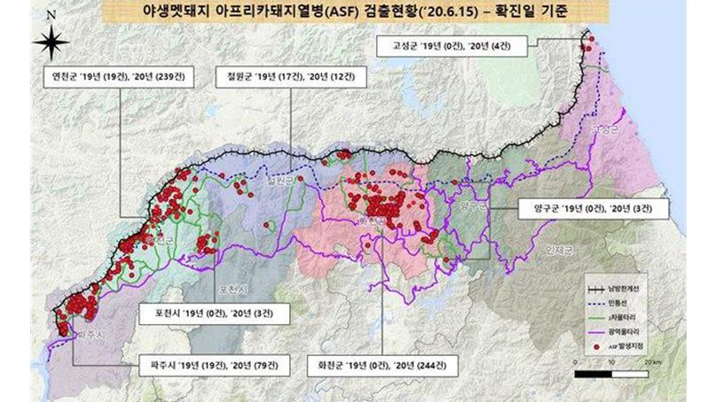 야생 멧돼지 아프리카돼지열병 폐사체, GPS 활용해 찾는다