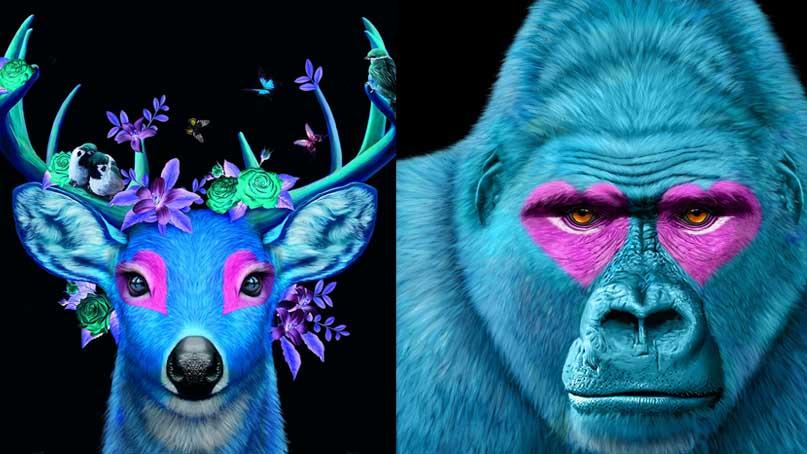 핑크빛 하트 눈의 푸른 사슴…고상우작가 사진전