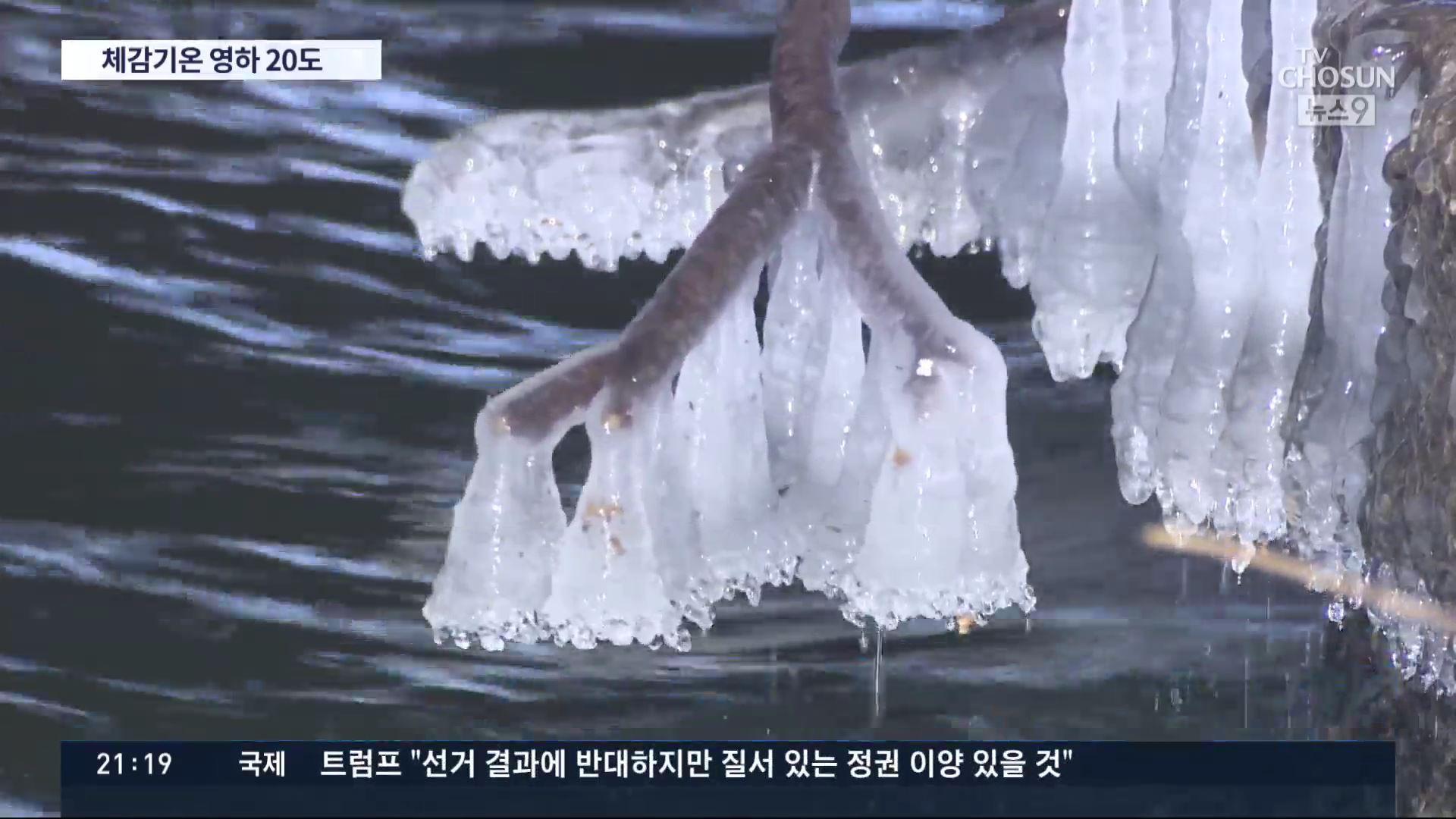 이 시각 체감온도 '영하 20도'…8일 올겨울 최강 한파