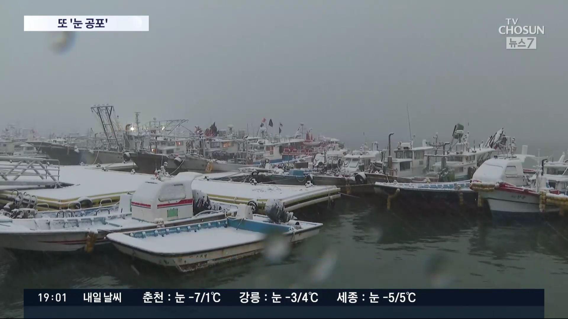 밤사이 '많은 눈'…보령 대설주의보·서울 2~7㎝·중부 최대 15㎝