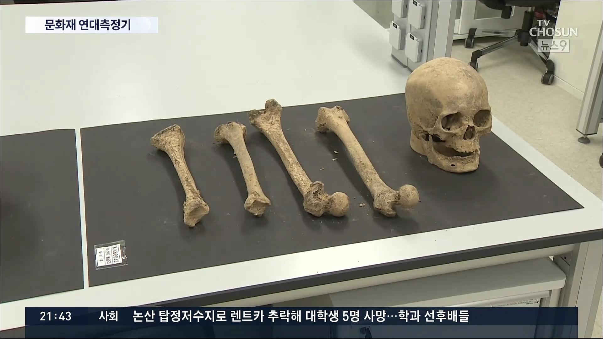 '사람·동물 뼈로 과거사 알아낸다'…국내 첫 연대측정 장비 도입
