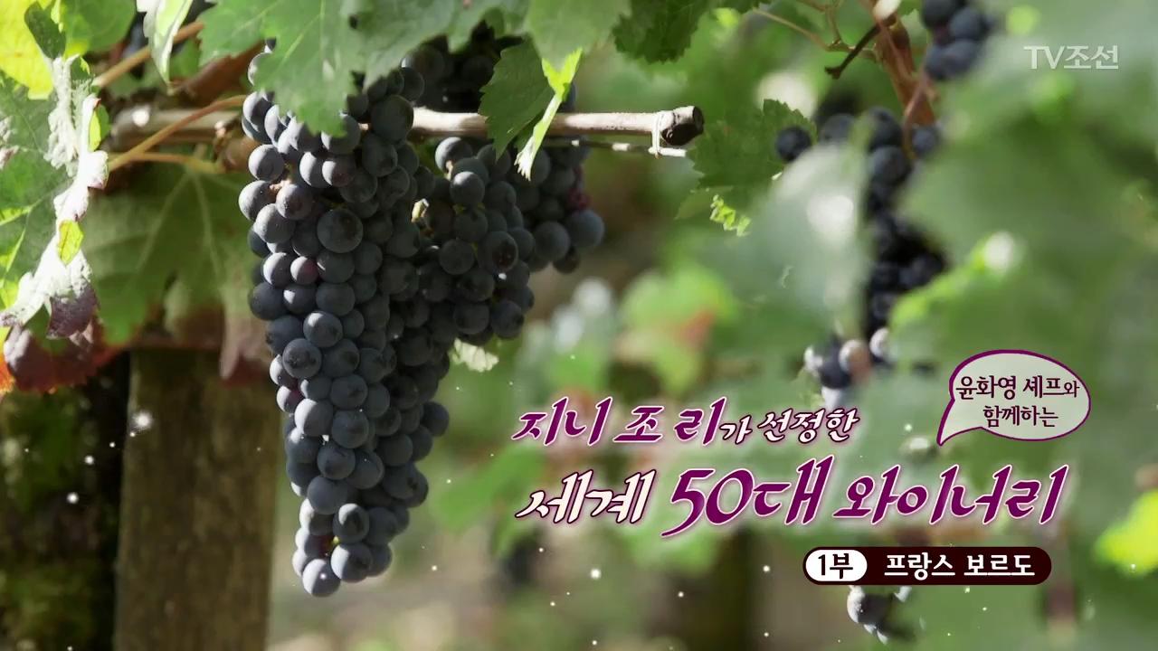 위대한 와인의 탄생 1회