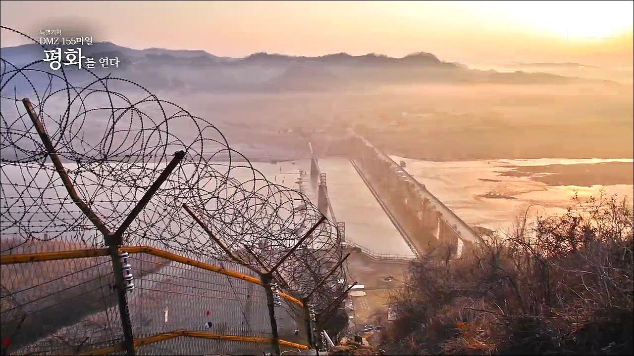 DMZ 155마일 평화를 연다