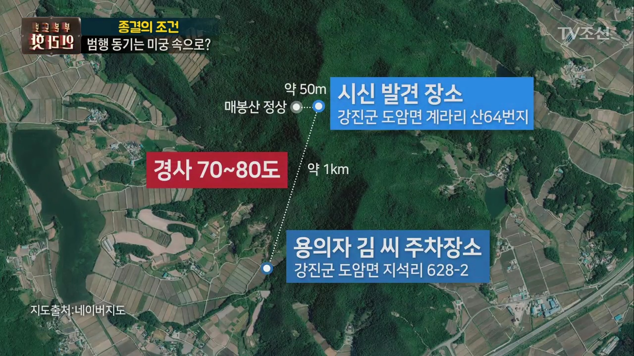 보도본부 핫라인 315회