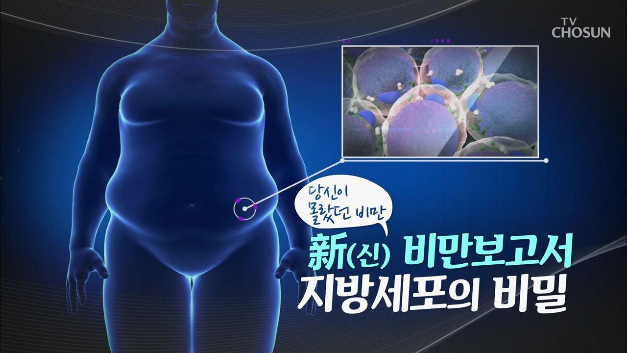 특집다큐 27회 - 비만 보고서! 지방세포의 비밀핑거루트