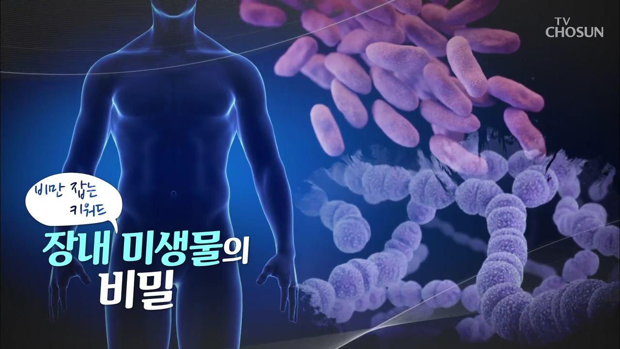 특집다큐 40회 - 비만잡는 키워드, 장내 미생물의 비밀