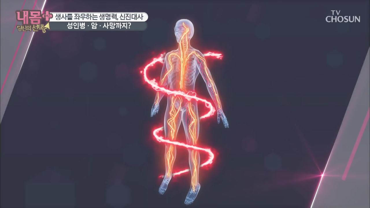 내 몸 플러스 158회