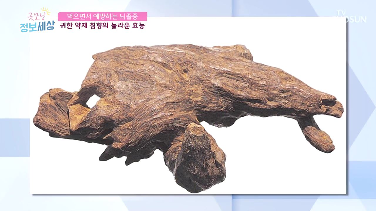 굿모닝 정보세상 62회