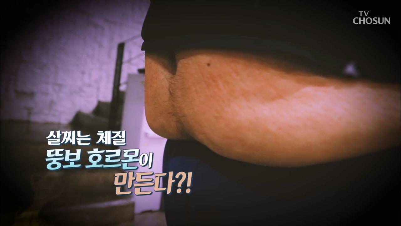 건강다큐 60회 - 살찌는 체질 뚱보 호르몬이 만든다?!
