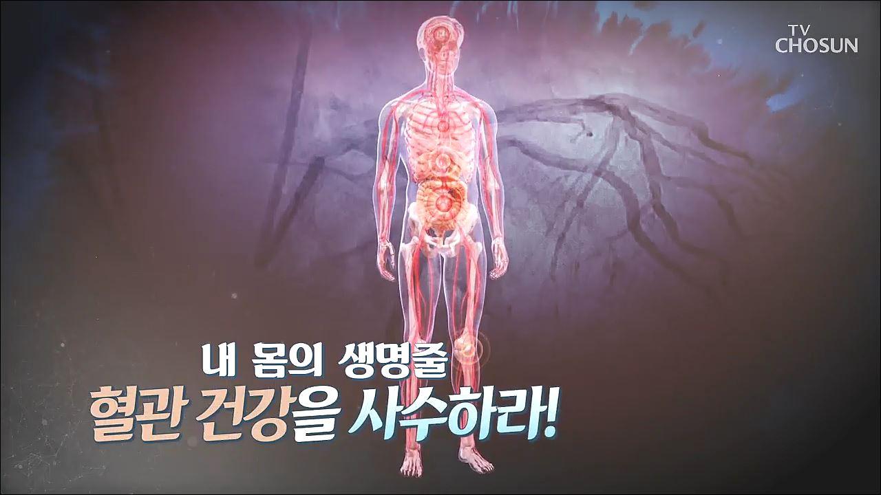 건강다큐 72회 - 내 몸의 생명줄 혈관 건강을 사수하라!