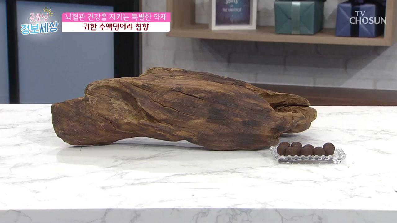 굿모닝 정보세상 159회