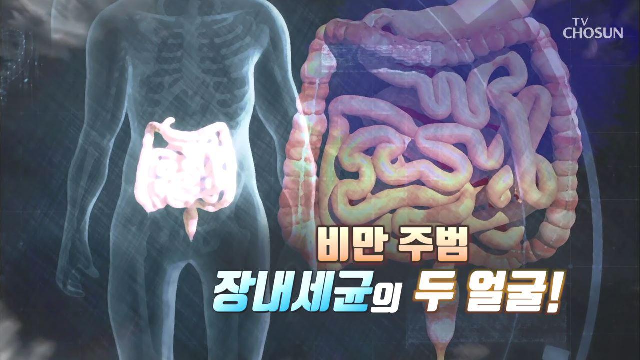 건강다큐 88회 - 비만 주범 장내세균의 두 얼굴!