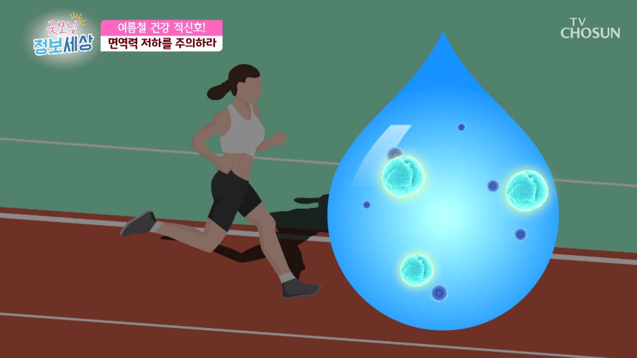 굿모닝 정보세상 236회