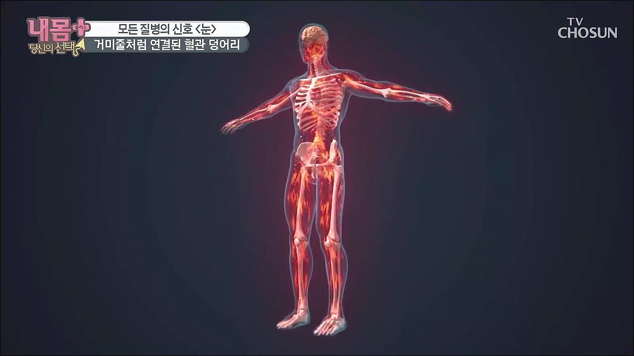내 몸 플러스 206회