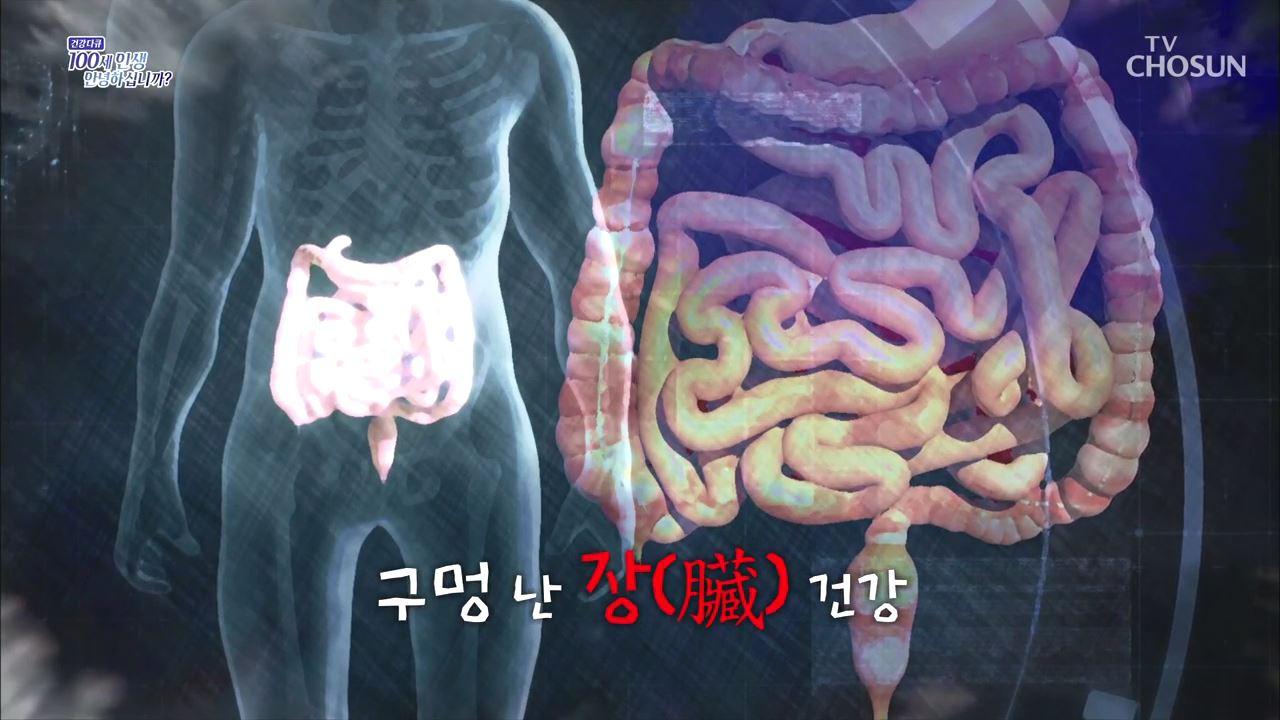 건강다큐 103회 - 구멍 난 장(臟) 건강