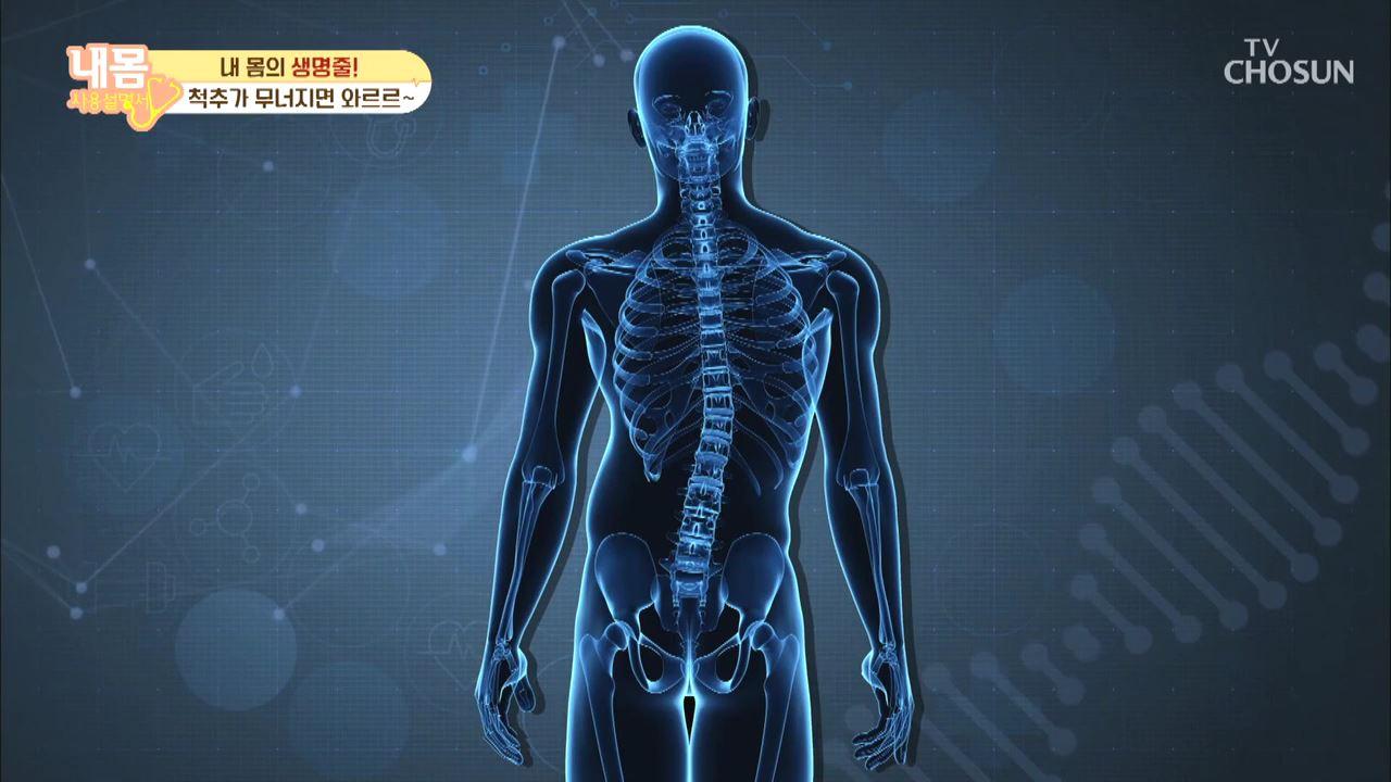 내 몸 사용 설명서 319회
